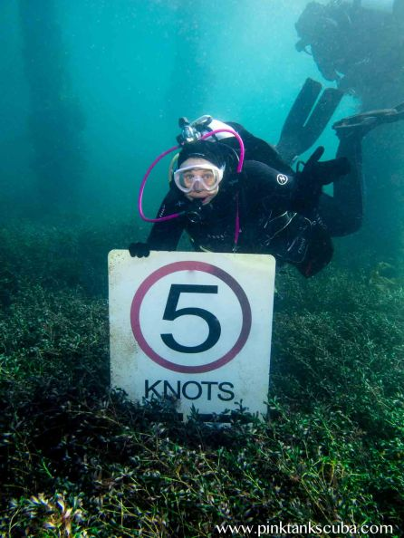 PT with 5 knots sign