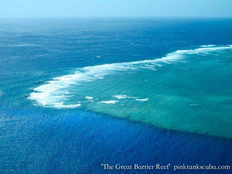 Spectacular  Reef