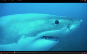 Screen Shot 2014-12-03 at 10.05.38 pm