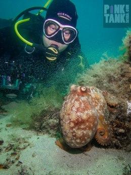 logo-adriana-and-octopus