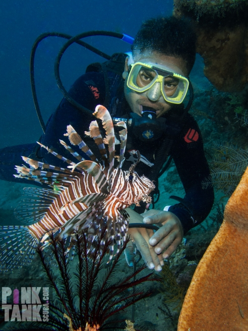 LOGO Diver with Lion Fish