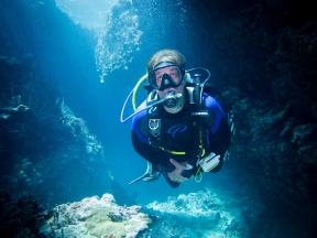 Adrian diving landscape logo