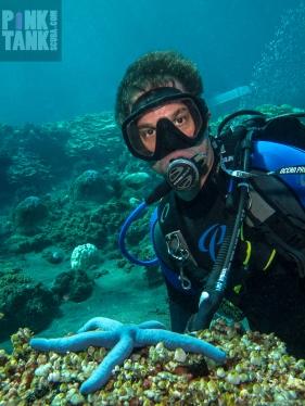 LOGO Abe in Bali with Blue Seastar