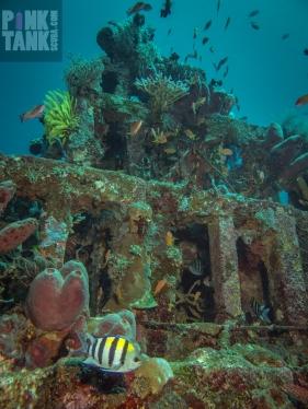LOGO Underwater Pyramid of Amed Mid Shot