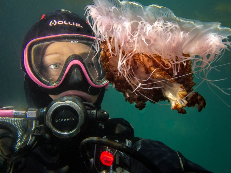 pt-and-sea-jelly-selfie