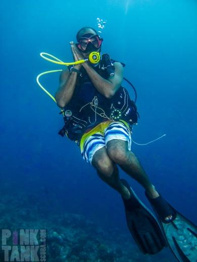 LOGO Maldives Mox Nigh Nighs