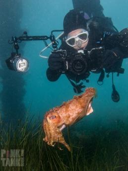 LOGO Adriana at Flinders Shooting down at Cuttlefish